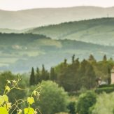 Weinland Italien