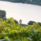 Galicien