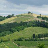 Lombardei: Spitzenweine aus dem Norden Italiens