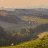 Weinland Österreich Teil 2