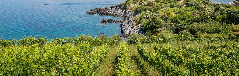 Kalabrien Weinland Italien