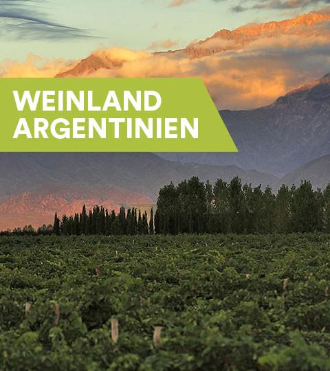 Weine aus Argentinien