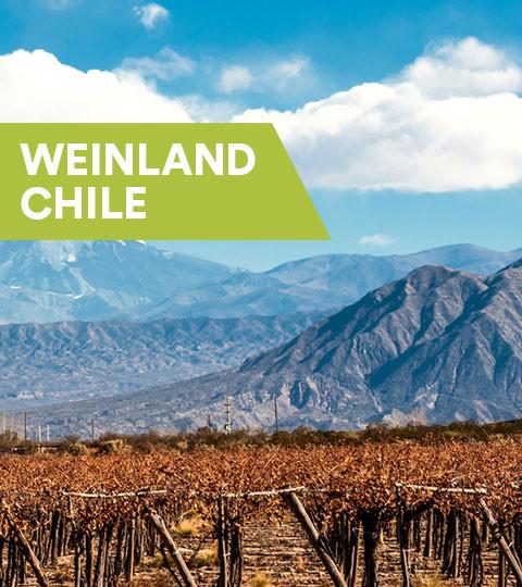 Weine aus Chile