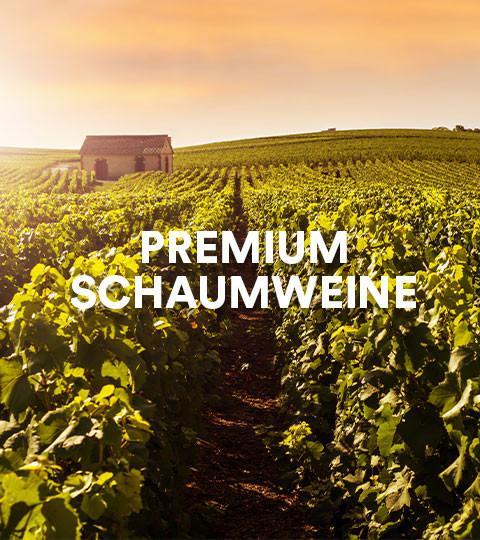 Premium Schaumweine
