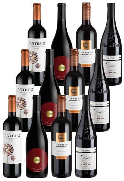 12er-Starterpaket Rotwein - Weinpakete
