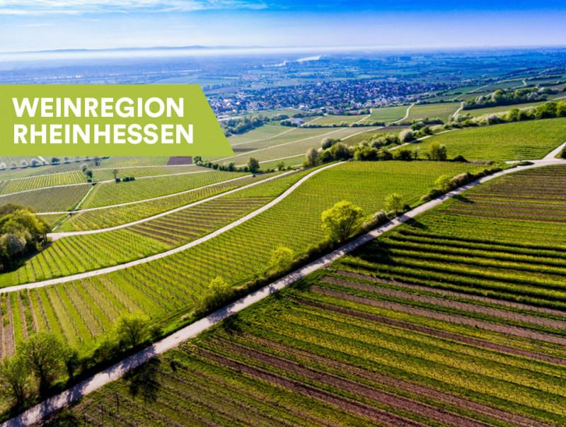 Weine aus Rheinhessen
