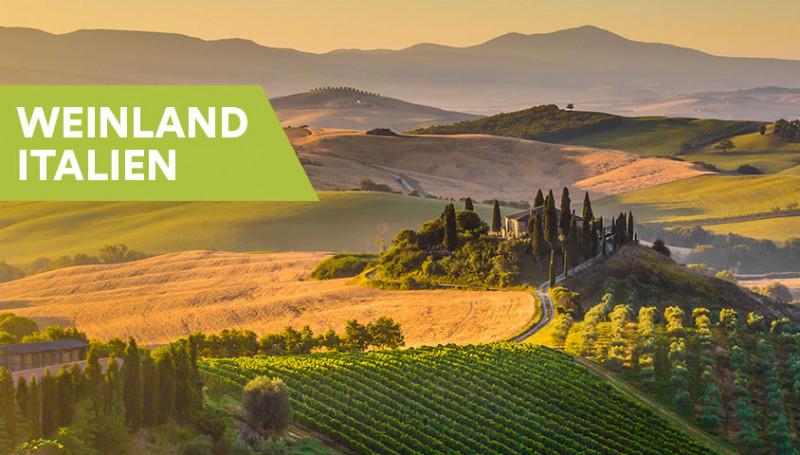 Weine aus Italien